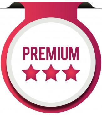 Loja Virtual PrestaShop Premium